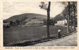 BOCKHOLTZ - Route De Goebelsmuhle à Esch Sur Sûre - Andere