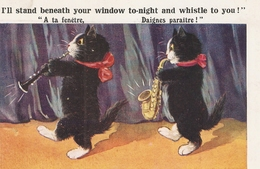 """""""I'll Stand Beneath Your Window Tonight,,"""" Humorous Enter-Art Comique Ser. PC # 1515 - Humor"""