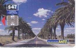 Nº 55 TARJETA DE URUGUAY DE ANTEL DE CARRETERA Y PALMERAS - Uruguay