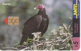 Nº 113 TARJETA DE URUGUAY DE ANTEL DE UN CUERVO CHIP ROJO (PAJARO-BIRD) - Uruguay