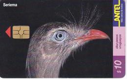 Nº 150 TARJETA DE URUGUAY DE UN SERIEMA (CHIP G5 ROJO) (PAJARO-BIRD) - Uruguay