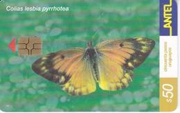 Nº 189 TARJETA DE URUGUAY DE UNA MARIPOSA (CHIP G5 ROJO) BUTTERFLY - Uruguay
