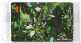 Oman - Fagonia Indica Flower - 52OMNK - 2001, 50.000ex, NSB - Oman