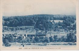 CPA Cirey-sur-Vezouze - Les Glaceries Et La Forêt - Cirey Sur Vezouze