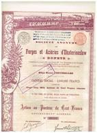 """Titre Ancien - Société Anonyme Des Forges Et Aciéries D'Ekaterinoslaw """"Donetz"""" - Titre De 1895 - Déco - - Russie"""