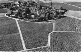 VIGNOBLE Vin - 33 - CHATEAU PALMER : Cru Margaux Classé En 1855 - CPSM Dentelée Noir Blanc Format CPA - Gironde - Vigne
