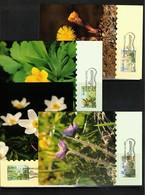 Aland 1997 Flowers Maximumcards - Pflanzen Und Botanik