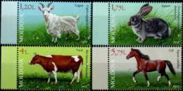 "Moldova 2019 ""Domestic Animals"" 4v Quality:100% - Moldavie"