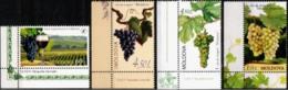 "Moldova 2013 ""Wine Grape Varieties Of Moldova"" 4v Quality:100% - Moldavie"