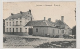 BEIRLEGEM - ( Beerlegem ),Brouwerij - Brasserie (  Bière  , Attelage ) ( N° 12993 ,Haegeman-Cousy  ,  Sottegem ) - Zwalm