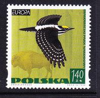 Europa Cept 1999 Poland 1v  ** Mnh (45738A) - 1999