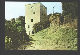 Beaumont - La Tour Salamandre - Chromo Végé - Ca 10 X 7 Cm / Pas De Carte Postale - Beaumont
