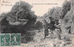 LA VIE A LA MER LA PECHE A LA CREVETTE 19-0458 - Francia