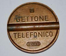 18 - GETTONE TELEFONICO - I.P.M. - 7909 - Professionali/Di Società