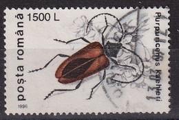 Rumenia 1996, Insect Minr 5169 Vfu - 1948-.... Repúblicas