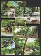 Sri Lanka (2019) - 6 Blocks - /  Butterflies - Birds - Monkeys - Elephants - Lizards - Fishes - Papillons