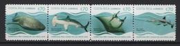 Costa Rica (2019)  - Set  -   /  Marine Fauna - Fauna Marina - Fishes - Poissons - Sharks - Vita Acquatica
