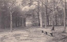 2775122Doorn, Van Ouds De Steenen Tafel - Doorn