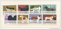 1964 MNH Bulgaria, Dogs,  Postfris - Bulgaria