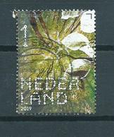 2019 Netherlands Zomerlinde,trees,bomen Used/gebruikt/oblitere - Period 2013-... (Willem-Alexander)