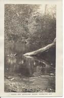 Brook And Woodland Round,  Knowlton, Quebec, Unused (D114) - Quebec