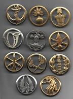 Lot De 11 Insignes De Béret - Armée De Terre