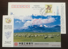 Sheep In Bayinbrook Grassland,snow Mountain,Animal Husbandry,CN 02 Industrial And Commercial Bank Xinjiang Branch PSC - Farm