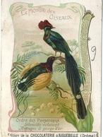 Chromo Chocolaterie Aiguebelle Le Monde Des Oiseaux  Astrapie Gorge D'Or Séleucide Eclatant - Aiguebelle
