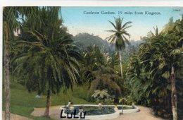 JAMAÏQUE : Castleton Gardens 19 Miles From Kingston - Jamaïque