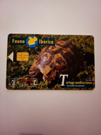 Télécarte D' Espagne : Tortue - Tartarughe
