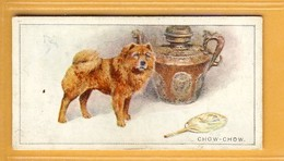 Chow Chow Dog - Tobacco Card - Imperial Tobacco Canada - Sigarette