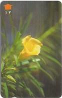 Oman - Yellow Oleander Flower - 33OMNM (Normal 0), 1997, 200.000ex, Used - Oman