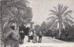 MONACO.  MONTE-  CARLO; CPA. JARDIN DU CASINO. ANNEE 1904 + TEXTE - Casino