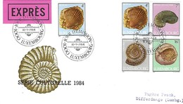LUXEMBOURG  -  FDC     10.9.1984  -  Série Culturelle  1984  -  Lettre EXPRES - FDC