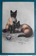 CPA - Fantaisie - Chats Siamois - Siamese Royal Cats  Signé Ophélia Billinge 1916 - Katten