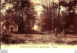 77 . Seine Et Marne .  Combs La Ville .  Foret De Senart : Le Puits . - Combs La Ville