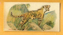 Tiger - Pop Out Die Cut -  Millbank The Quality Cigarette Montreal? Quebec? Canada - Sigarette