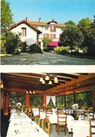 """58 - ST PIERRE LE MOUTIER : Restaurant Gastronomique """" LA VIGNE """" - CPSM-CPM Multivues Grand Format - Nièvre - Saint Pierre Le Moutier"""