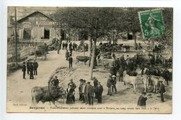 Bergerac Marché Aux Boeufs (légende En Occitan) - Bergerac