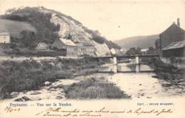 PEPINSTER - Vue Sur La Vesdre - Pepinster