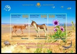 Kazakhstan 2019.  Pearls Of Kazakhstan. Barsa-Kelmes Nature Reserve. Fauna. Flora.  MNH - Kazakistan