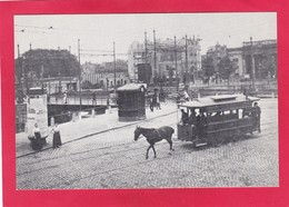 Modern Post Card Of Amsterdam Noord-Holland,,D47. - Amsterdam