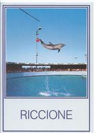 AK-E-678    Riccione - Delphinschau - Delphine