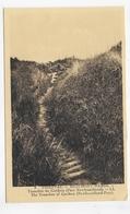 THIEPVAL - N° 9 - BEAUMONT HAMEL - TRANCHEE DU CARIBOU - TRANCHEE OF CARIBOU - NEW FOUNDLAND PARC - CPA NON VOYAGEE - Autres Communes
