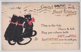 Good Luck And Best Wishes Empk Artist Artiste Illustrateur Chats Noir Chat à Ruban Black Cat - Katten
