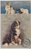 Chatons Chat Et Chien Artist Artiste Illustrateur Cat And Dog - Katzen