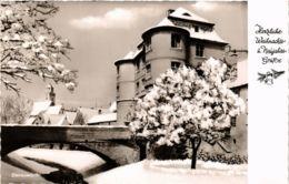 CPA AK Donauworth- GERMANY (943627) - Donauwoerth