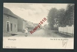 Wasseiges.  La Rue Du Château Animée. Très Ancienne Carte.   2 Scans. - Wasseiges