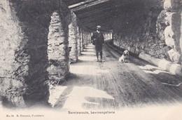 Berninaroute Berninastrasse Lawinengallerie - GR Grisons