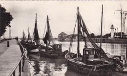 14. HONFLEUR . BATEAUX DE PÊCHE . ANNEE 1957 + TEXTE - Honfleur